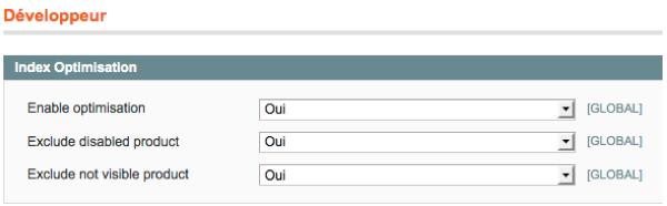 Configuration de l'extension Magento DnD-Patch-index