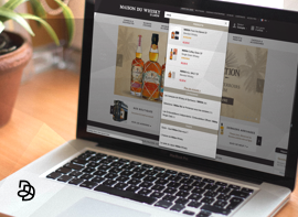moteur recherche interne de site E-Commerce